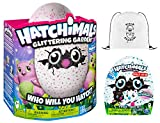 Hatchimals Glittering Garden Burtle & CollEGGtibles Blind Bag (Season 2) & Pack-A-Hatch COMBO