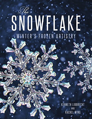 Snowflake Winters Frozen Artistry product image
