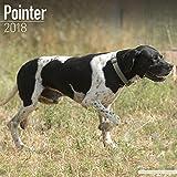 Pointer Calendar - Dog Breed Calendars - 2017 - 2018 wall Calendars - 16 Month by Avonside