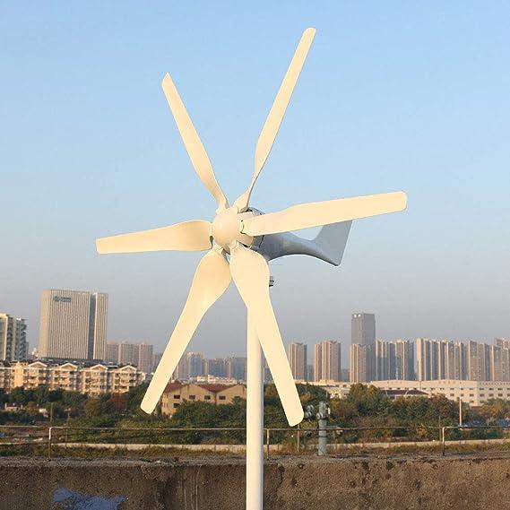 Generador de turbina eólica de 800 W, 12 V, 24 V, con 6 cuchillas para el techo del hogar (24 V, 6 cuchillas)
