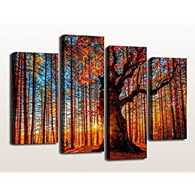 Sunset Woods Forest Painting Pictures Canvas Prints Framed Ready to Hang - 4 Panels Large Red Trees Sunshine Landscape Painting Giclee Art Work Modern Wall Decor for Office and Home Living Room Bedroom Decoration