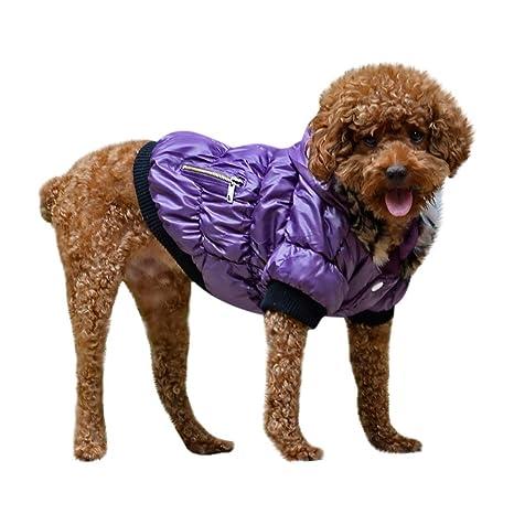 Rawdah_Mascota Ropa para Perros Peque?os Abrigos Camiseta ...