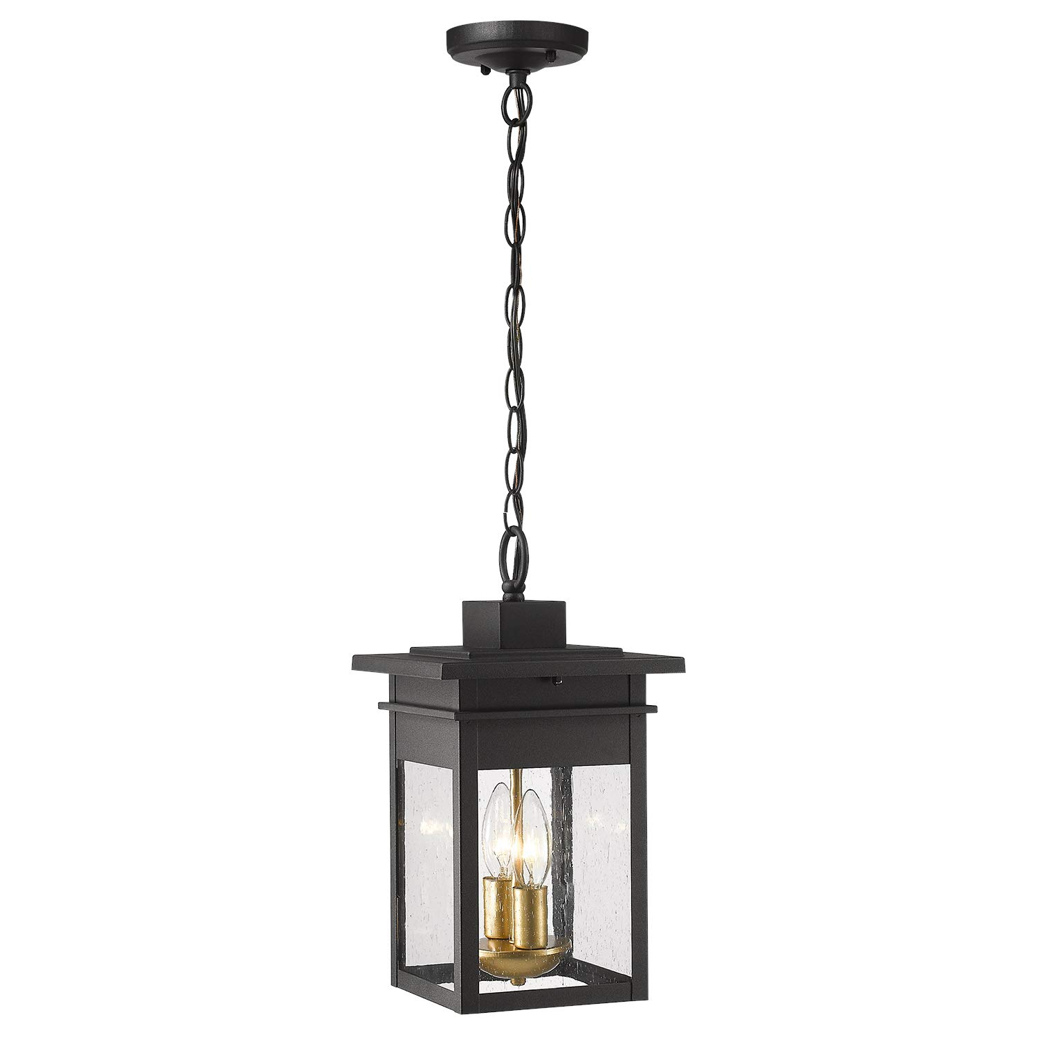 Zeyu 2-Light Outdoor Hanging Lights for Porch, 14 inch Exterior Pendant Light Fixtures, Black and Gold Finish with Seeded Glass, 20072H2 by zeyu