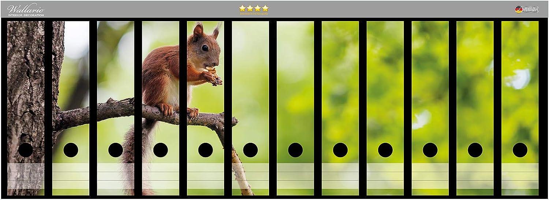 passend f/ür 9 breite Ordnerr/ücken Wallario Ordnerr/ücken Sticker Eichh/örnchen auf Einem AST in Premiumqualit/ät Gr/ö/ße 54 x 30 cm