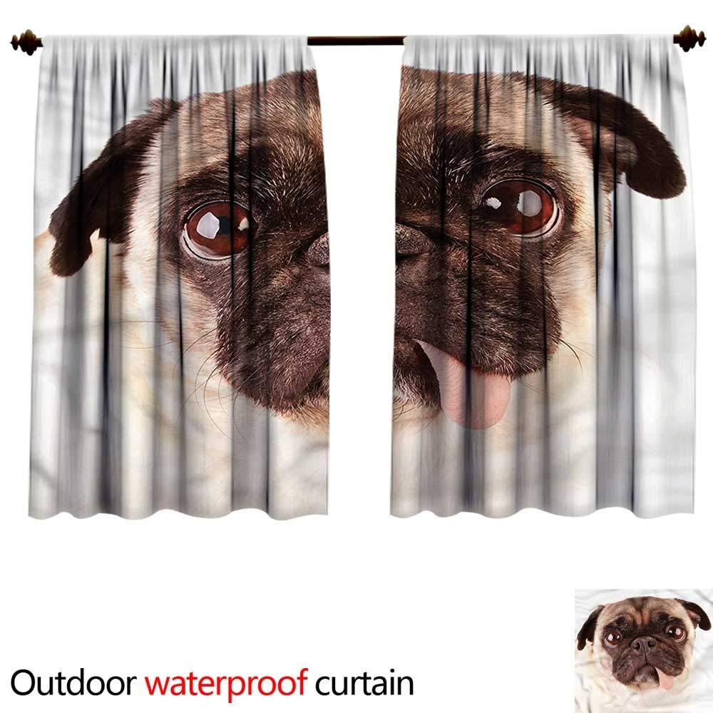 color02 W55\ color02 W55\ BlountDecor UPF Outdoor curtainAnti-Water W55 x L45(140cm x 116cm) Pug,Upset Dog Sad Eyed Pet