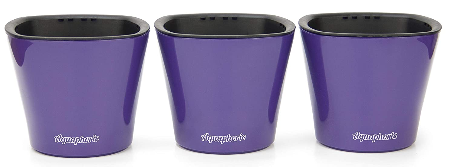 """Self Watering Mini 3.5"""" Planter Pots (3 Pack PURPLE) Grow a Indoor Window Sill Garden. Perfect for Potting Smaller House Plants, Herbs, African Violets, Succulents, Flowers or Start Seedlings."""