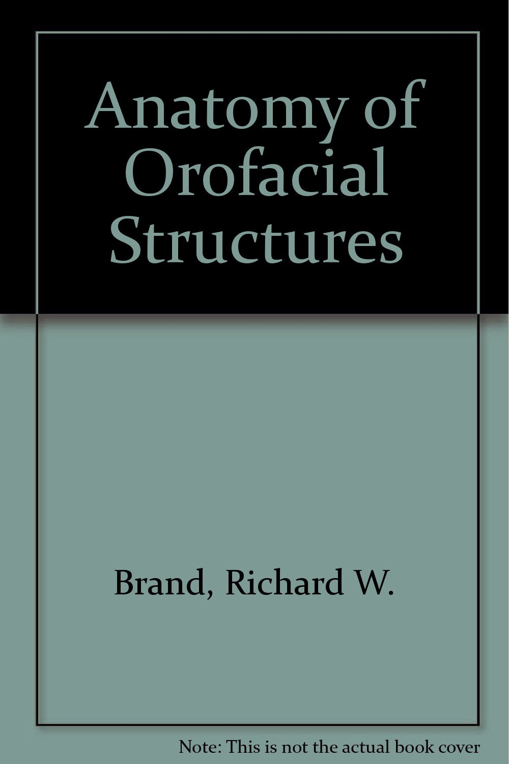 Buy Anatomy Of Orofacial Structures Book Online At Low Prices In