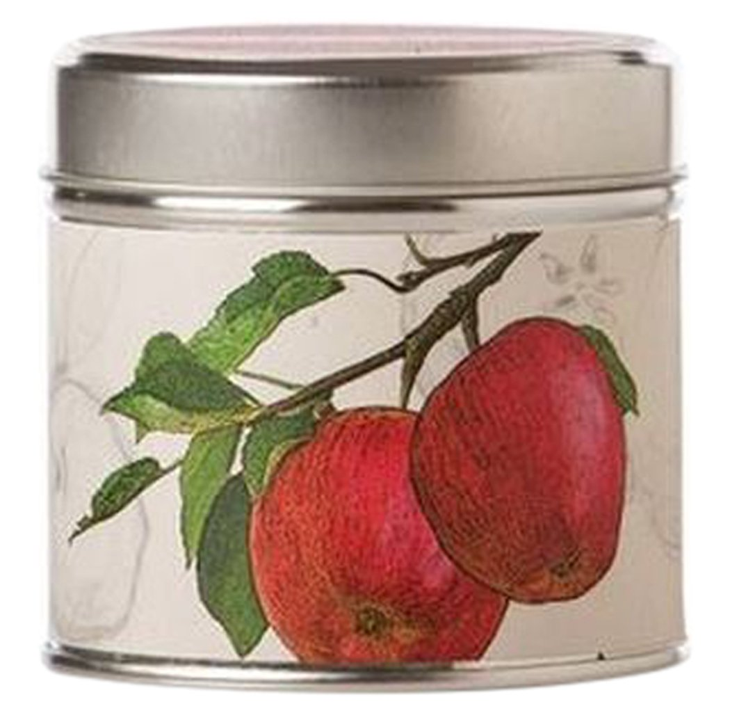 品揃え豊富で Rosy Rings Tin Spicy by Apple Soy Tin by Rosy Soy Rings B0058U0QRE, キョウワマチ:873261b1 --- a0267596.xsph.ru