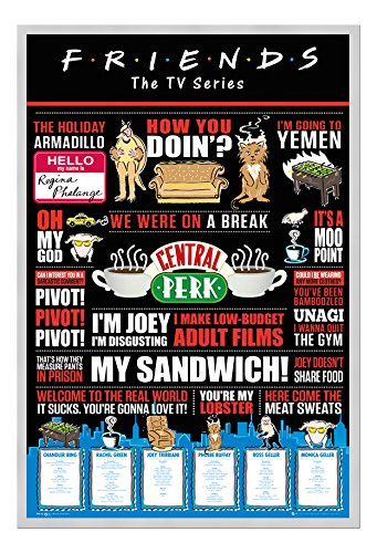 Friends TV Series Infographic Quotes Poster Cork Pin Memo Board Silver Framed cms Approx