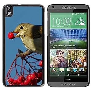 Print Motif Coque de protection Case Cover // F00003544 la alimentación de aves // HTC Desire 816