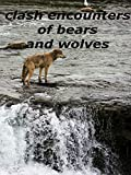 clash encounters of bears and wolves