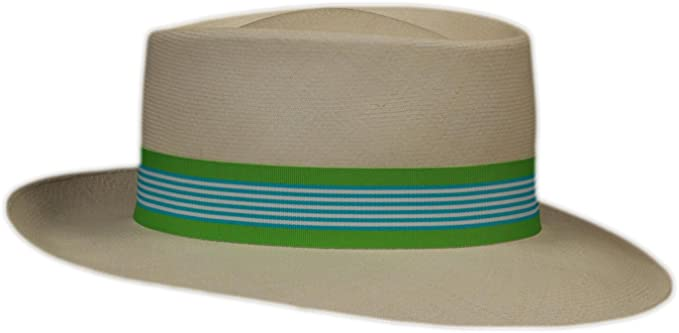 a5bf78861 Grosgrain Hat Band (Blue Hawaiian Twist) at Amazon Men's Clothing store: