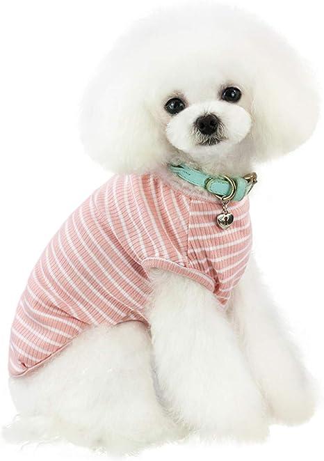 Small DogCat Sweater