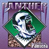 : Tribute To Pantera