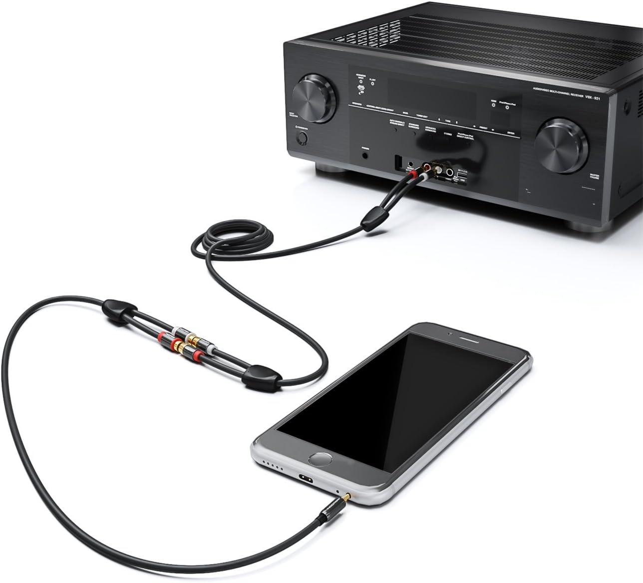 deleyCON RCA Audio St/ér/éo /à LAdaptateur de Prise Noir Fiche Jack 3,5mm 2X Prise RCA