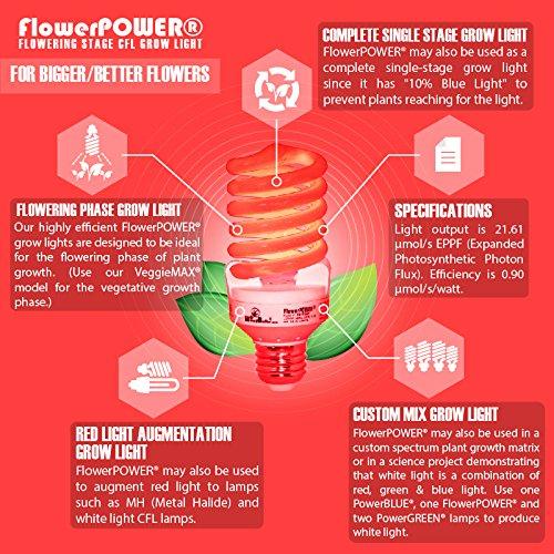 Amazon weedbulbs flowerpower flowering stage cfl grow amazon weedbulbs flowerpower flowering stage cfl grow light 24 pack modelcb1024fb 24w120v60hz garden outdoor mightylinksfo
