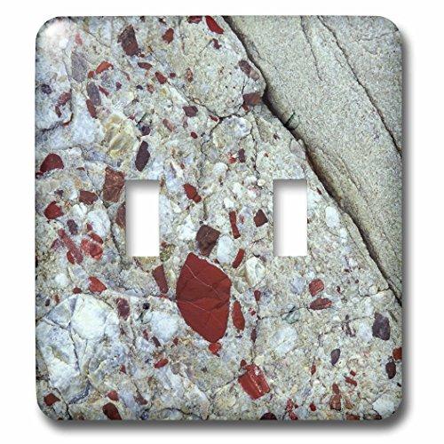 (3dRose LLC lsp_91072_2 Pudding Stone, Jasper Quartz, Rock Mineral Us23 Bja0030 Jayne's Gallery Double Toggle)
