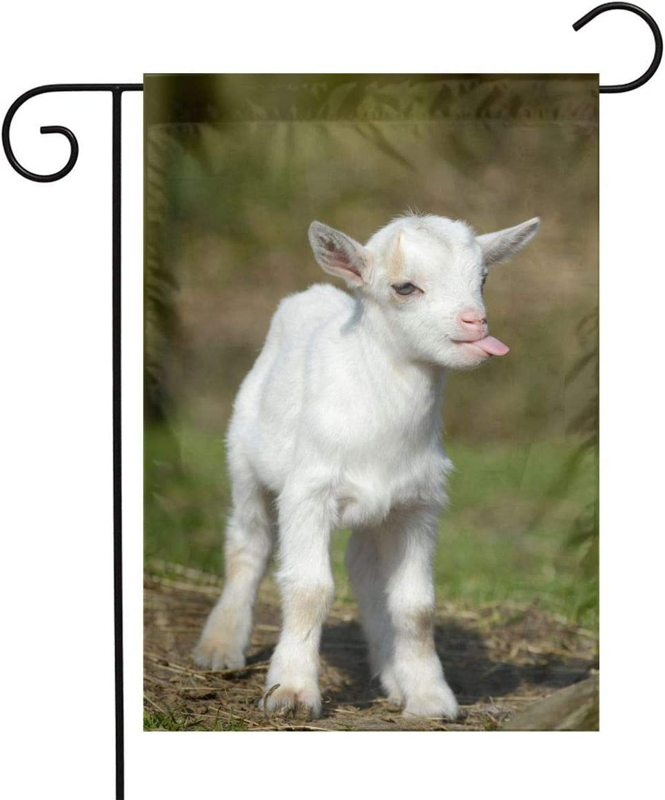 Funny Baby Goat Smile Moment Garden Flags Home Indoor & Outdoor Holiday Decorations,Waterproof Polyester Yard Decorative for Game Family Party Banner