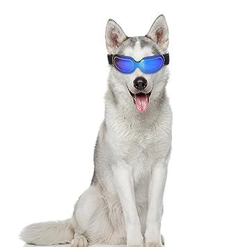 4dcc0fdc0d531 Sue Supply Lunettes de chien – Petit chien Lunettes de soleil étanche coupe-vent  protection