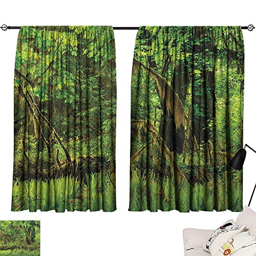 Door Curtain Rainforest,Trees with Moss Natural Paradise Silence