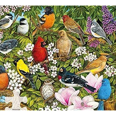 Sandy Williams Garden Birds Puzzle - 300Piece: Toys & Games