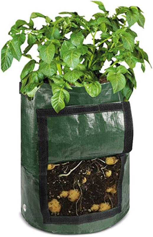 Garden Tub with Flap for Tomato Amakunft 2 Pack of 7 Gallon Sweet Potato Planting Bags Garden Containers for Vegetables