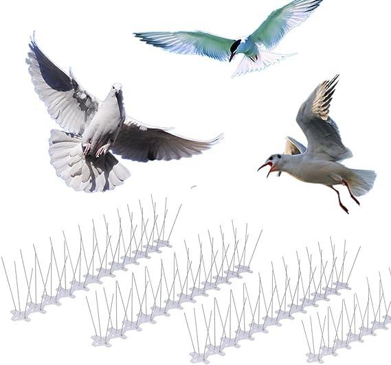 Skycabin Pack de 10 pinchos para ahuyentar pájaros Pinchos para ...