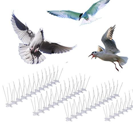 Skycabin Pack de 10 pinchos para ahuyentar pájaros Pinchos para ahuyentar pájaros de acero inoxidable Keep pájaros palomas y gaviotas,Anti Pájaro y ...