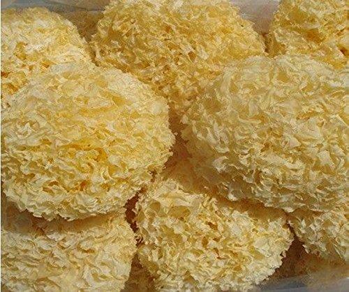 White Fungus Mushroom Tremella Premium Grade 320 Gram