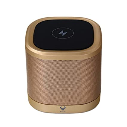 Gold Su Luoyu Bluetooth Speaker Rich Stereo Amazonin Electronics