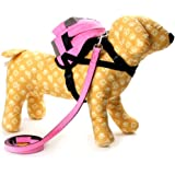 SCT Pet Dog Self Mini Backpack Comes Leash,Take Dog's Belongings By Dog Itself,Funny and Cool Outside Walk The Dog