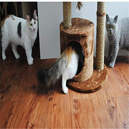 DAYUMAOJIN Árbol de Gato, Gato Grande Árbol de Gato 1.2m de ...