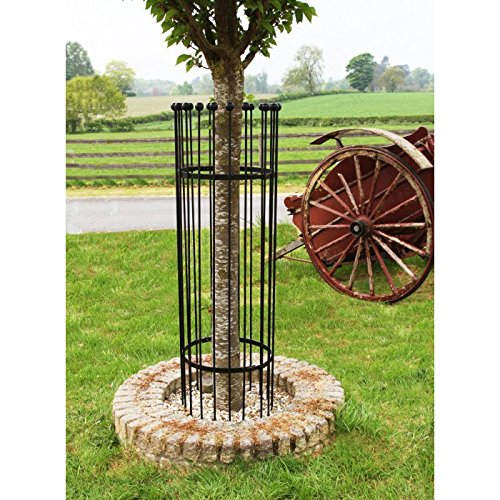 'The Titan' Tree Guard - Black - 3 Sizes Available (Medium) Black Country Metal Works