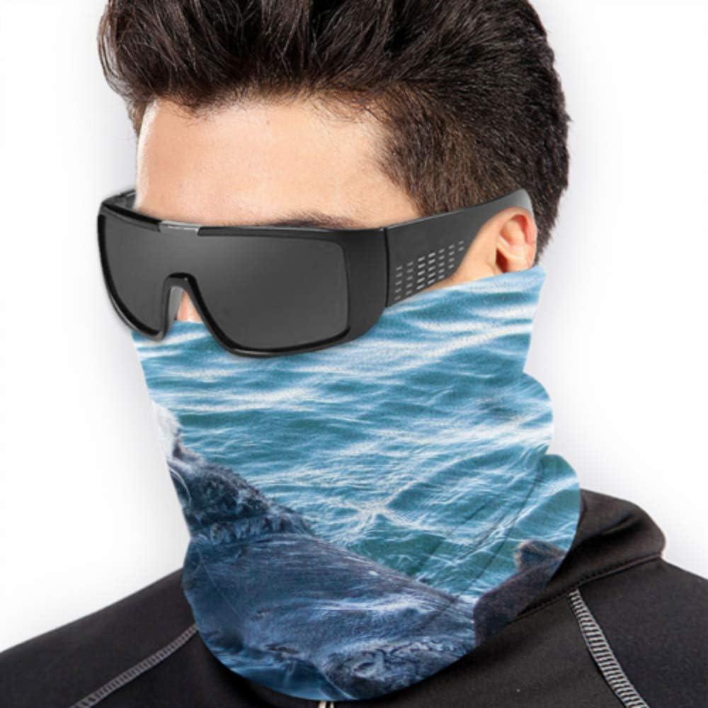 Nutria de mar de California en Morro Bay en el centro C Sombreros para mujer Cuello cálido Polaina Máscara de protección facial para el sol Multifunción para el clima frío de invierno Mantener el cal