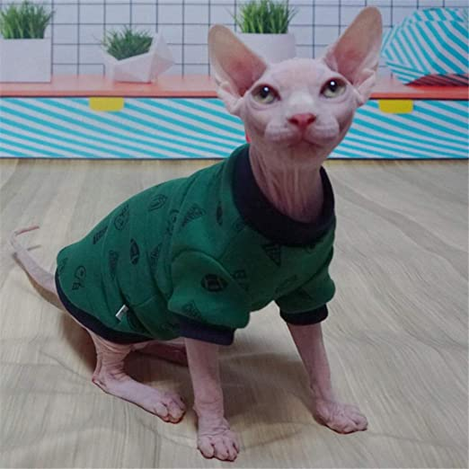 ZHIHAN Ropa para Gatos Sphynx Gato sin Pelo más suéter de Terciopelo Verde, XS, Verde: Amazon.es: Productos para mascotas