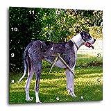 Dogs Great Dane – Blue Merle – 13×13 Wall Clock (dpp_625_2) Review