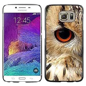 FECELL CITY // Duro Aluminio Pegatina PC Caso decorativo Funda Carcasa de Protección para Samsung Galaxy S6 SM-G920 // Eye Bird Animal Nature Fur Feathers