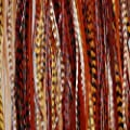 """Feather Hair Extension Earth Tone Remix 6""""-12"""" Feathers for Hair Extension Includes 2 Silicone Micro Beads and (5 Feathers)"""