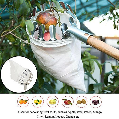 STARRICH Fruit Picker Head Basket or Fruit Picking Tools, Fruits Catcher for Harvest Picking Apple Citrus Pear Peach, etc