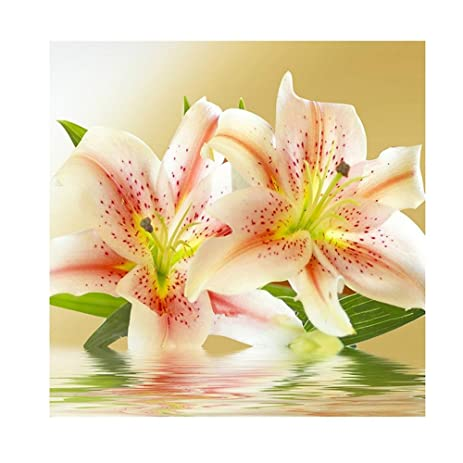 Amazon.com: Whitelotous Lily Flowers 5D Diamond Painting Lily ...