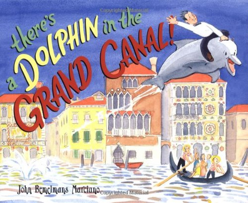 There's a Dolphin in the Grand Canal ebook