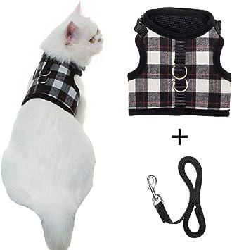 Amazon.com: Arnés para gatos a prueba de caídas con correa ...