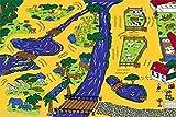 3 X 5 Zoo Animals Roads And Water Children Fun Kids Rug Gel Back Non Skid
