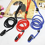 Lucrative shop Pet Dog Nylon Rope Training Leash Slip Lead Strap Adjustable Traction Collar 5GBY