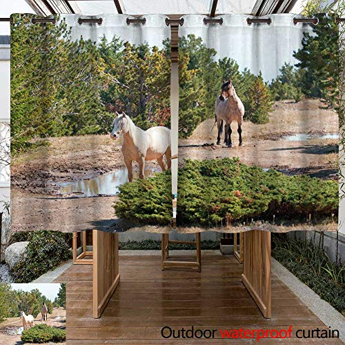 WinfreyDecor Outdoor Curtains for Patio Waterproof Palomino mare and Red Roan Stallion on Tillett Ridge in The Pryor Mountain Wild Horse Range in Montana USA W55 x L72