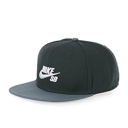 Gorra Nike - Sb Icon Pro Negro Osfa: Amazon.es: Industria ...