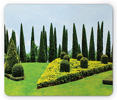 Garden Mouse Pad by Lunarable, Classic Formal Designed Garden Evergreen Shrubs Boxwood Topiaries Picture, Standard Size Rectangle Non-Slip Rubber Mousepad, Green and Baby Blue (Standard Topiary)