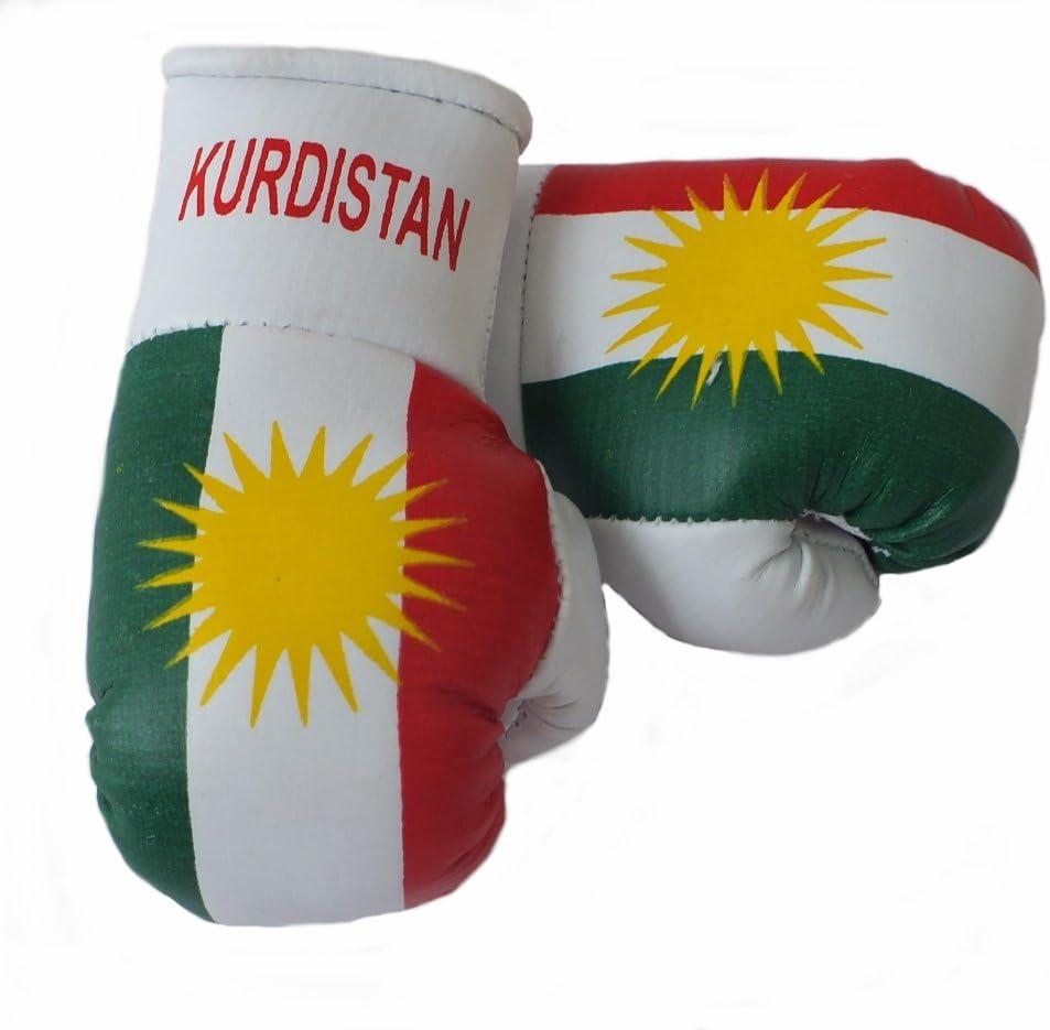 Sportfanshop24 Mini Boxhandschuhe Kurdistan 1 Paar 2 Stück Miniboxhandschuhe Z B Für Auto Innenspiegel Auto