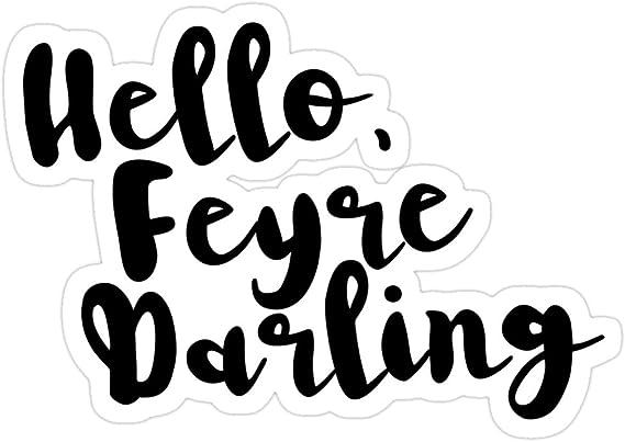 Illyrian Feysand ACOWAR Feyre Darling: Zippered Accessory Pouches Night Court Rhysand ACOMAF Bookish ACOTAR 2 Sizes Rhys Feyre