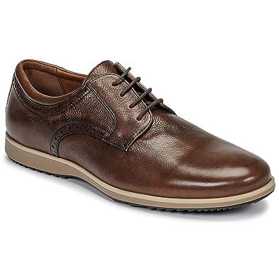 232f11a81b282 Amazon.com | Geox Men's Blainey B Leather Oxford Shoe | Oxfords